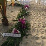mermaid beach wedding set up