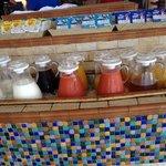 Fruit Juice Bar for Guava, Papaya, and Cranberry Fans