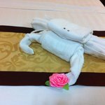 The towel animal is very special 