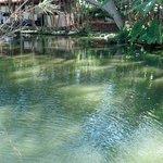 lagoa na área da pousada