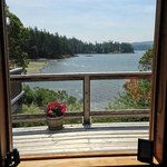 Part of the view from the cottage!