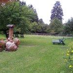 Blick in den Garten v Fellerhof
