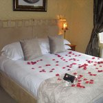 our room ( with the rose petals as part of the deal)