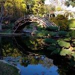 Moon bridge in the Japanese garden