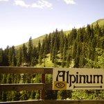 Eingang zum Alpinum