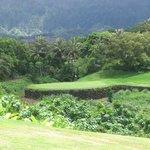A Splendid Par 3 Royal Hawaiian GC