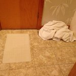 Our clean towels housekeeping left on the floor after mopping the floor with them