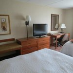 Hampton Inn Dubuque Foto