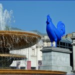 National Gallery    Trafalgar Square, A giant Blue Rooster  blue rooster -2013 Katharina Fritsch