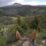 The best kind of view there is, through a trusty horse's ears!