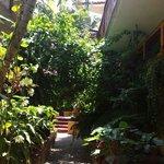 Hermoso jardín rodea la habitación
