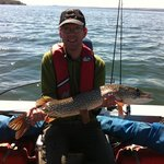 "34"" Northern Pike"