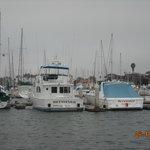 boats, boatsm and more boats