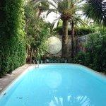 Hotel Windsor pool
