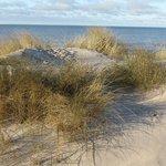 Выход к Балтийскому морю рядом с вилой Рассос