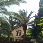 shady garden next door to a quiet church - perfect