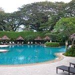 Pool at Garden Wing