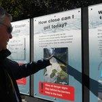 Information sign at Franz Josef Glacier