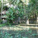 large decorative pool