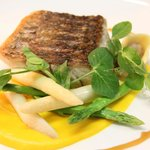 Pan fried NT Barramundi, carrot puree, asparagus, duck & foie gras tortellini,
