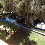 Blick vom Zimmer 260 zum Garten