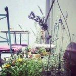 Garden @egesade hotel