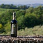 Chianti DOCG 2011 - bottiglia 0,375 lt