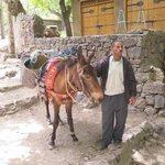 Muleteer with our Luggage