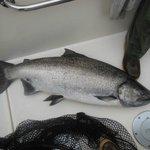 Haida Fishing