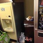 Trash in hallway.