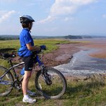 Baymount's Guided Biking Tours