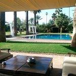 Vue piscine de la terrasse attenant au salon