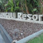 Sanguli