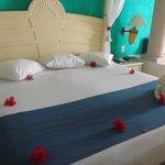 Room 6606
