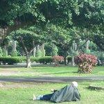 Una siesta en Parque de la Liga Arabe