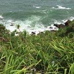 Jungle Beach views