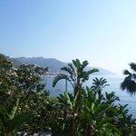Hotel Baia delle Sirene  -  Garden