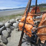 Salmon bake for National Aboriginal Day