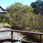 Vista Chalé Lavanda