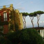 蔦が絡まる建物と木々が印象的!