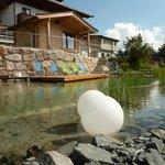 Badeteich mit Sauna  -  diese mit Aussicht auf das Kitzsteinhorn