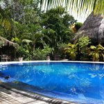 Gezellig, mooi en proper zwembad in zeer mooie omgeving. Top!