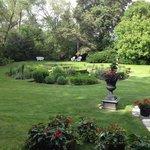 Backyard Garden Area Next To Our Table