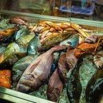 The fresh fish case