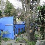 Jardim Casa Frida Kahlo