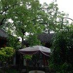 Courtyard on a rainy morning