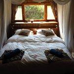 Mbuna Bay, room