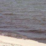 Horrible Beach