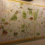 mapa mostrando o entorno do hotel