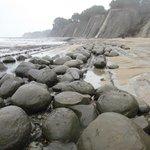 The Elusive Bowling Ball Beach